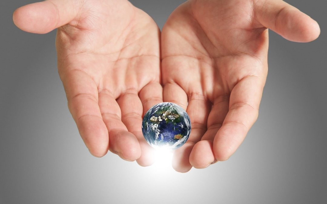 Importance of Saving the Planet